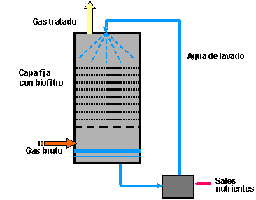 trickle_bed__reactor_es.jpg